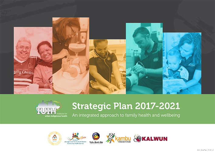 IUIH Strategic Plan 2017-2021