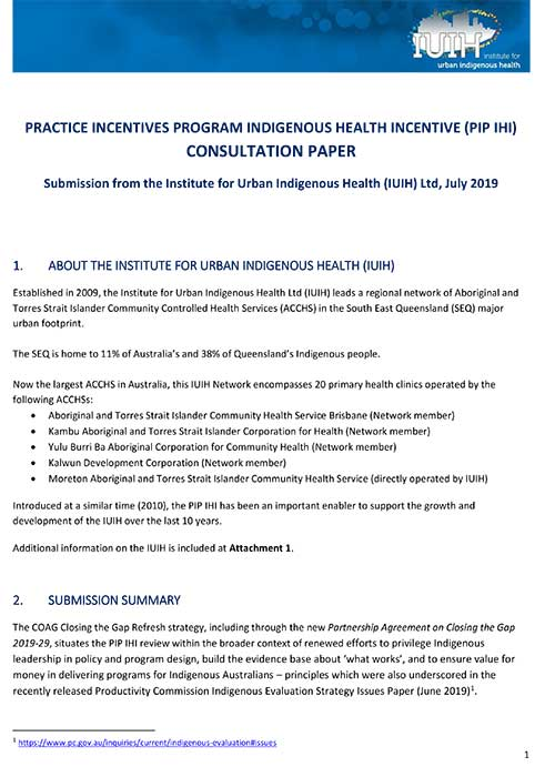 IUIH Submission   PIP IHI Review
